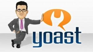 wordpress seo by yoast - polskie znaki